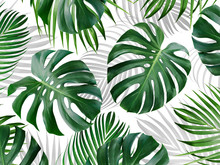 Tropical Leaves Pattern Background Design Of Monstera And Yellow Palm Summer Banner