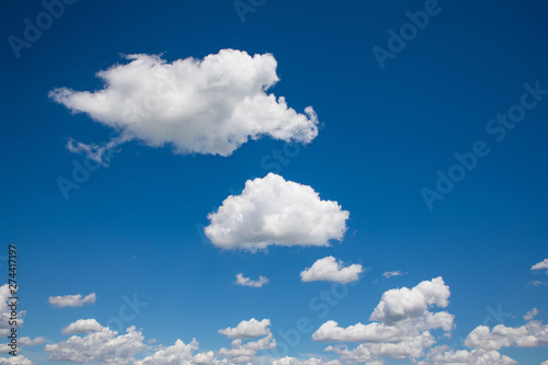 Obraz White, fluffy clouds in blue sky. Background from clouds. - fototapety do salonu
