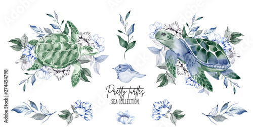Watercolor illustration with pretty turtles, flowers and leaves, isolated on whi Poster Mural XXL