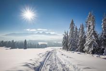 Tatra Mountain In Winter, Landscape Wiht Wiev Of Tatra Poland Pieniny Zakopane