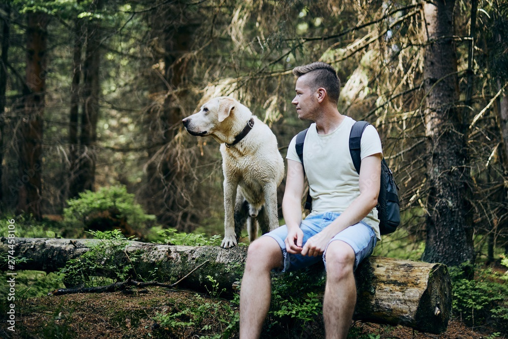 Fototapety, obrazy: Tourist with dog in forest