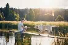Idyllic Summertime With Dog