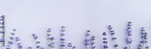 Flowers background banner. Frame pattern of lavender flowers on pale purple, violet  background. top view. copy space