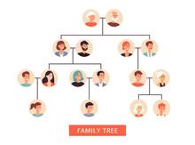 Family History Tree The Symbol Of Generations Flat Vector Illustration Isolated.