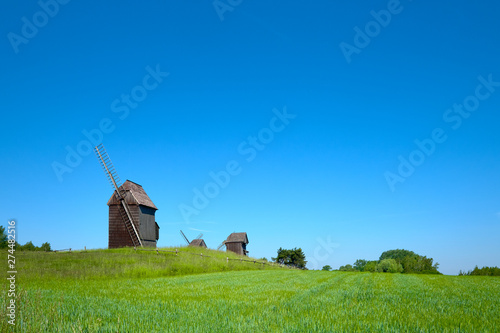 Rural landscape with historical windmills behind wheet field in Spring, copy-space