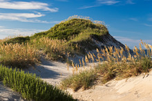 Sand Dunes Outer Banks 04