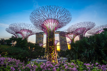 Singapore Travel Concept, Land...