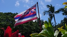 ハワイ州の州旗