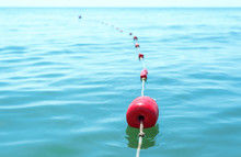 Red Buoys On The Water Tied With A Rope
