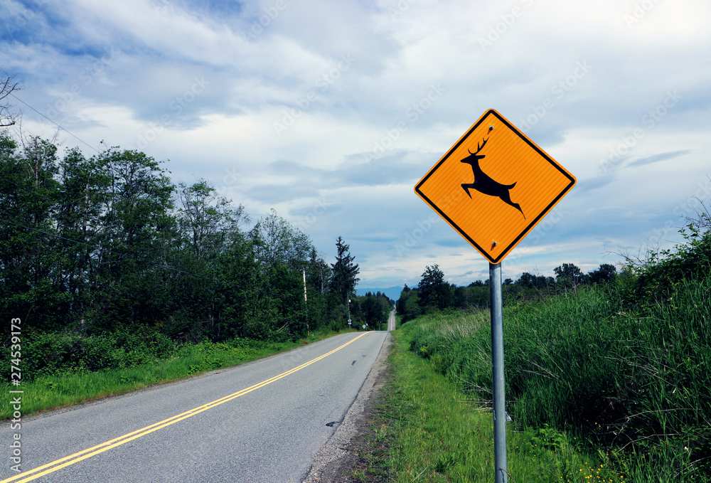 Fototapeta Deer Crossing sign on rural road on a cloudy day in Surrey, BC Canada.