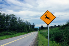 Deer Crossing Sign On Rural Road On A Cloudy Day In Surrey, BC Canada.