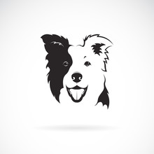 Vector Of A Border Collie Dog ...