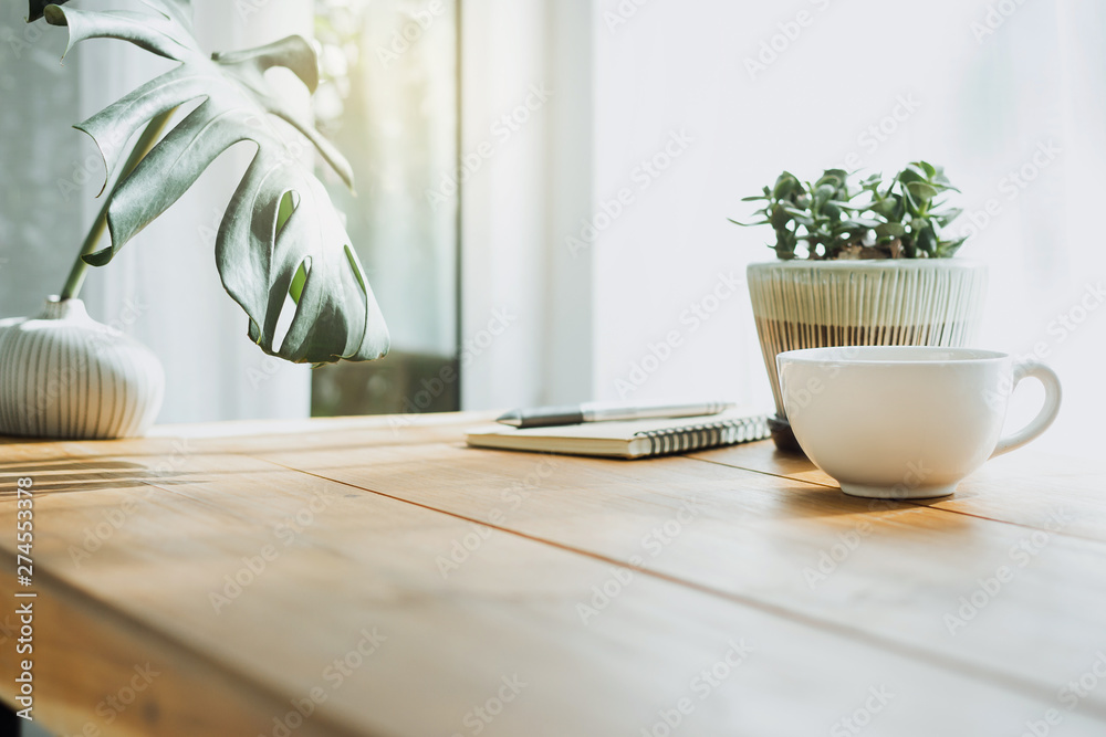 Fototapeta Closeup white cup of coffee with small trees and green leaf in vase on wooden table
