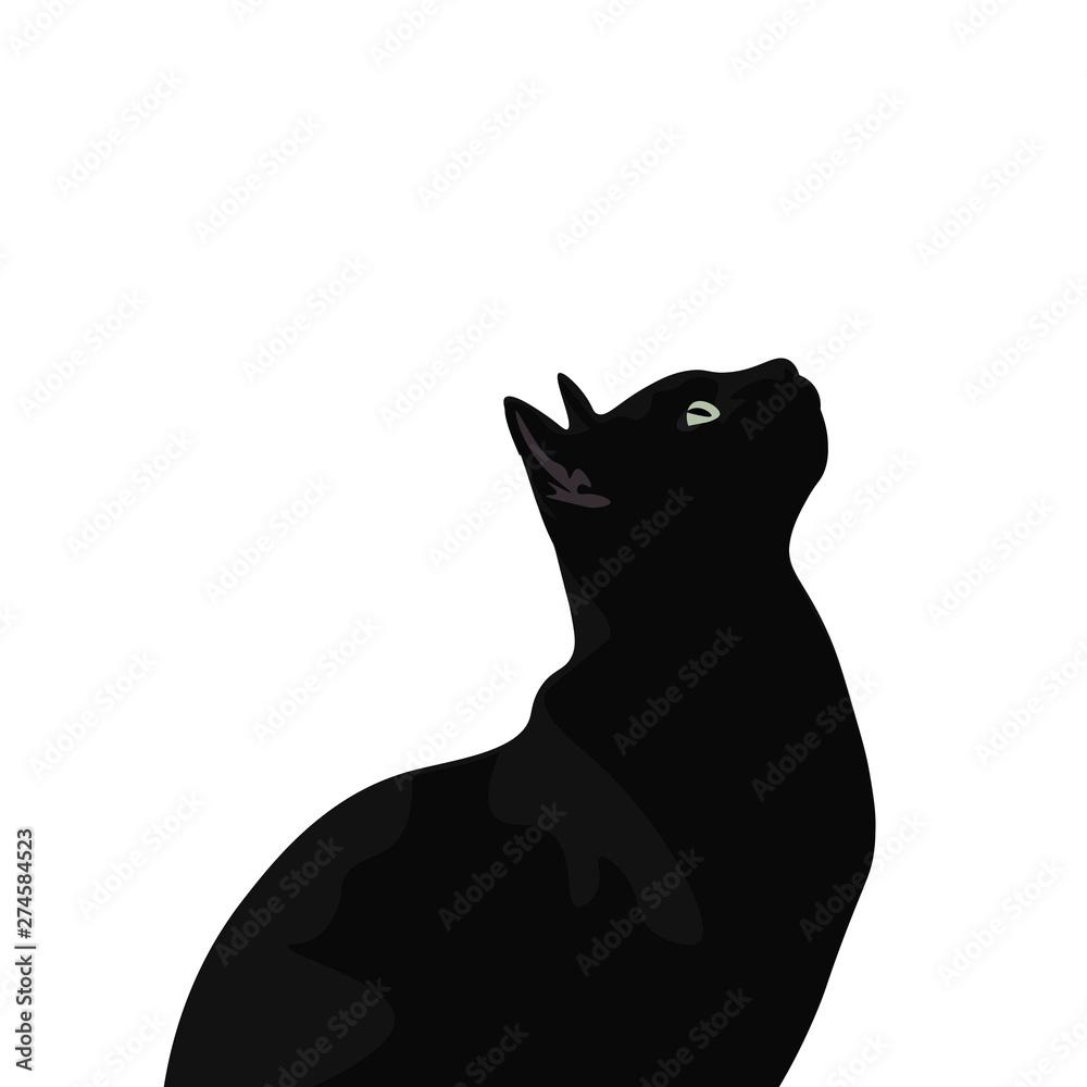 Fototapeta Ilustración de gato de pelo negro. Diseño plano de felino domestico, silueta de animal observando.