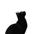 canvas print picture - Ilustración de gato de pelo negro. Diseño plano de felino domestico, silueta de animal observando.