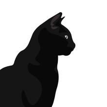Ilustración De Gato De Pelo N...