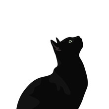 Ilustración De Gato De Pelo Negro. Diseño Plano De Felino Domestico, Silueta De Animal Observando.