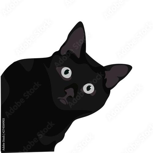 Ilustración de gato de pelo negro. Diseño plano de felino domestico, silueta de animal observando. Wall mural