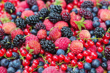 black berry red currant strawberries mulberry and raspberry berries for health background