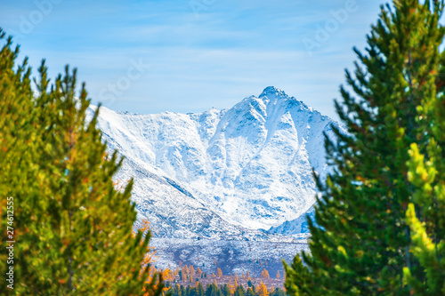 Foto auf Leinwand Blau View of snow-covered mountains through pine trees. Selective focus. North-Chuya ridge in Altai, Siberia, Russia