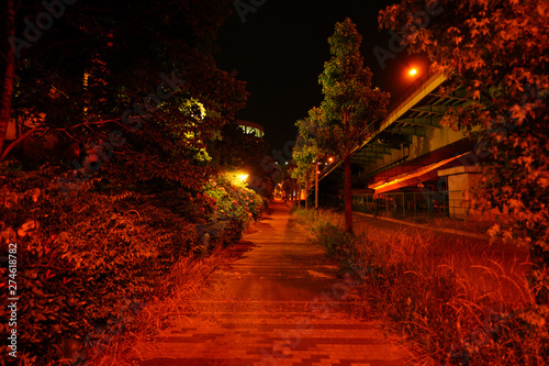Canvas Prints Narrow alley City landscape in Osaka