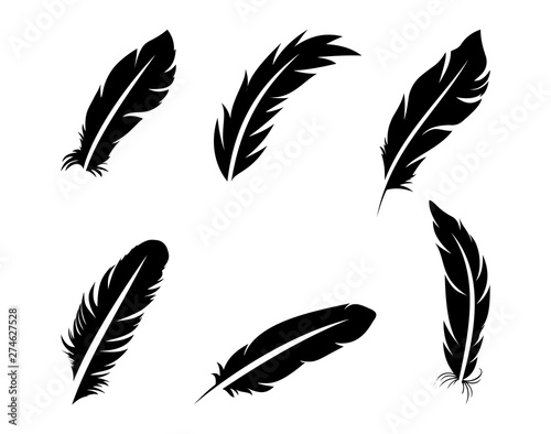 Set of black feathers on a white background in flat style.Vector Fototapete