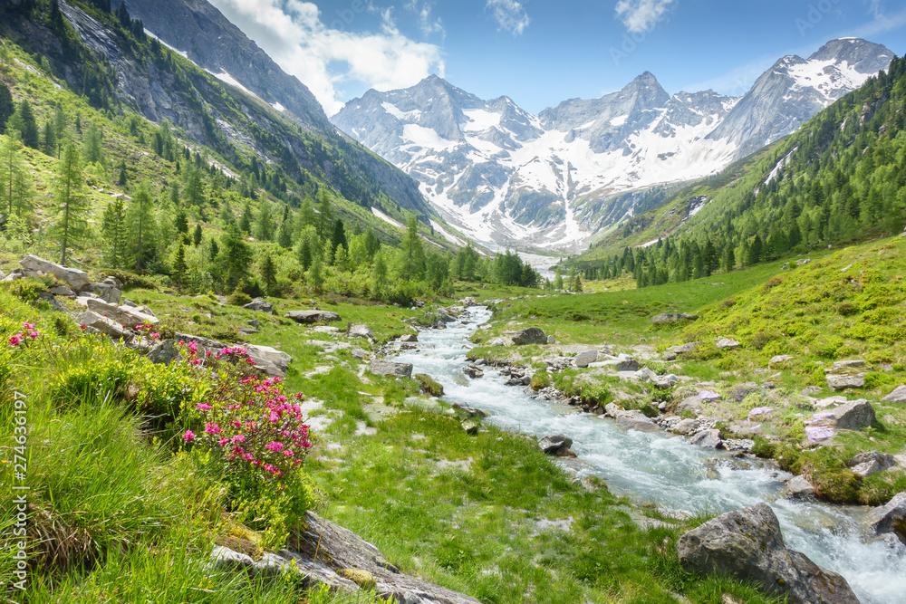 Fototapety, obrazy: Berglandschaft mit Wildbach und Gletscher im Hintergrund