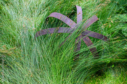 Obraz na plátně  Nature background of green sedge grasses in pattern and texture on an iron ball