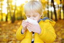 Little Boy Sneezing And Wipes Nose With Napkin During Walking In Autumn Park. Flu Season And Cold Rhinitis. Allergic Kid.