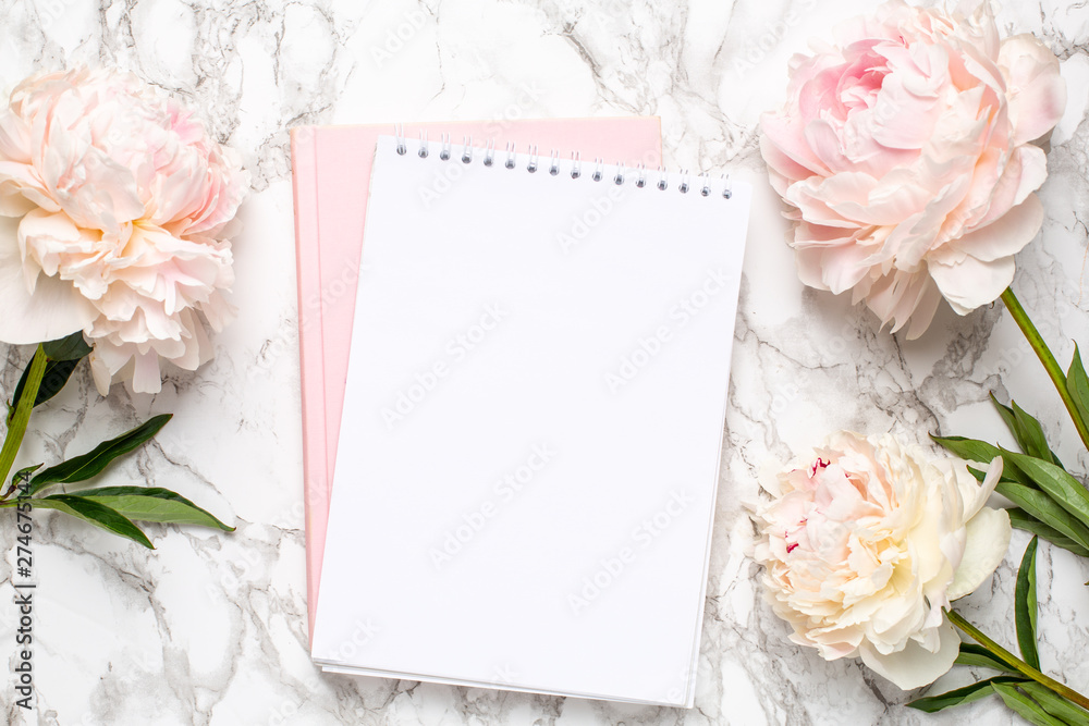 Fototapeta Beautiful white peony flower and notebook on marble background