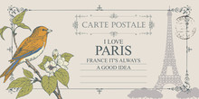 Vector Greeting Card Or Retro Postcard With Bird On Branch Of Flowering Tree And Silhouette Of Eiffel Tower. Romantic Card In Vintage Style With Words I Love Paris And Postmark In Frame With Curls.