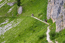 Mountain Hikers On A Trail On ...