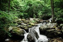 North Georgia Water Stream River National Park
