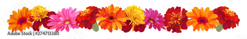 Fotografía  Panoramic view: roses, gerberas, daisies, marigold (tagetes)