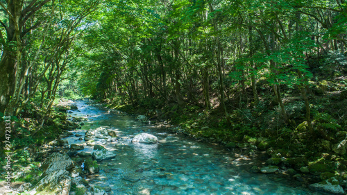 Photo Stands Forest river 川・渓流・ドローン