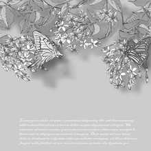Vector Illustration Of Hand Painted Flowers Rangoon Creeper, Colorful And Butterfly Background.