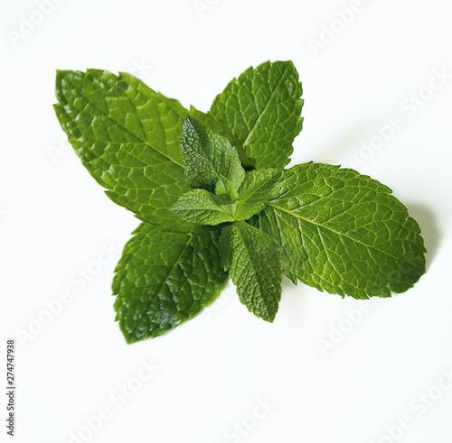 Canvas Print menthe, feuille, herbe, vert, isolé, frais, menthe poivrée, plante, menthe verte