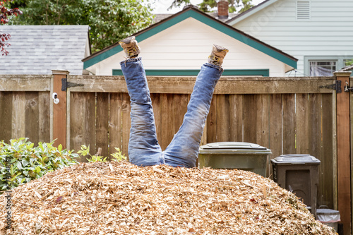 Fotografia, Obraz  Legs sticking out of a pile of wood chips as if a person has fallen into them