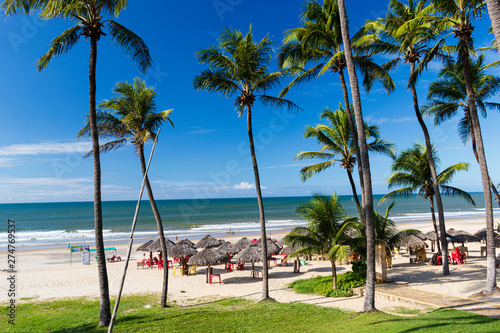 Garden Poster Brazil landscape beach of Lagoinha, Ceará - Brazil