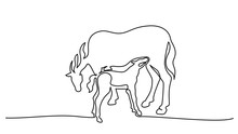 One Line Drawing. Horse Feeds Small Foal