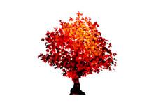 Vector Red Maple Tree Icon Isolated On White Background. Acer Palmatum, Deshojo, Japanese Maple Plant Bonsai Tree. Scarlet Princess Dwarf Japanese Maple