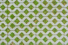Geometric Background Of Eco Floor Bricks And Green Grass. Eco Parking Texture