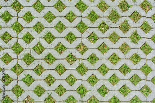 Fototapeta Geometric background of eco floor bricks and green grass