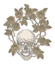 Human Skull With Rose Flowers. T-shirt Graphic Design. Vector Illustration Vintage.