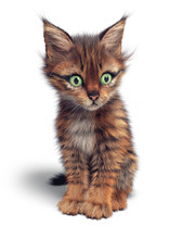 Cute Striped Kitten Looks Away With Wide Open Green Eyes. Glorious Striped Cat Sits On The Floor And Looks Very Curious. Brown Mackerel Tabby Cat With White Chest. 3d Rendering On A White Background.