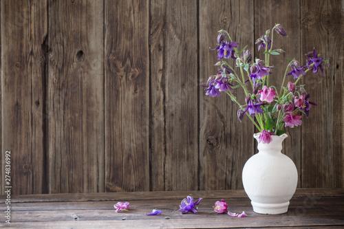 Obraz na plátne aquilegia flowers in white vase on old wooden background