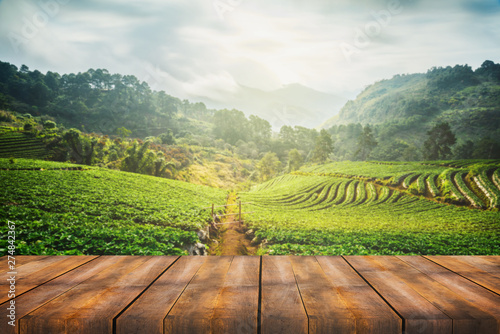 Foto wooden table with scenic view of strawberry field at Doi Ang Khang, Chiang Mai,