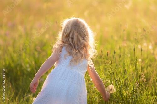 Obraz Beautiful blond little girl in the field - fototapety do salonu