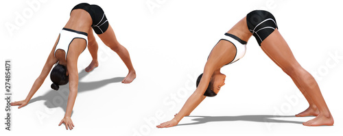 Foto op Canvas Ontspanning Left Profile and Front Three-quarters Poses of a Woman in Yoga Downward Facing Dog