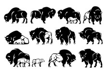 Bison Figure Set. Black Silhouette. Isolated On A White Background